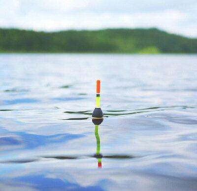 Pesca al Colpo Fishing Accademy